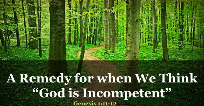 "A Remedy for when We Think ""God is Incompetent"""