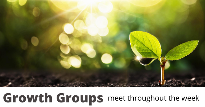Growth Groups - Meeting Online image