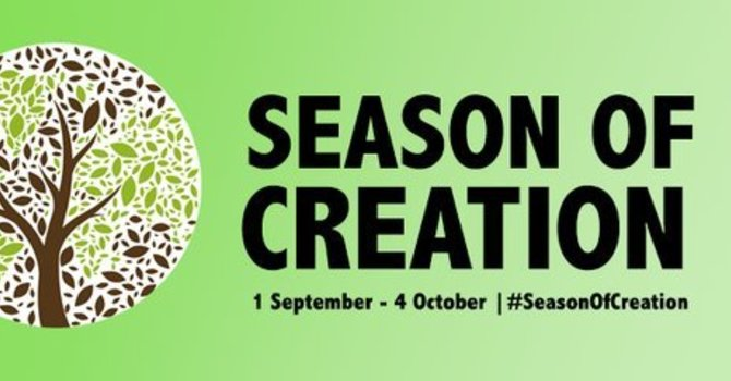 September 13, 2020 - Season of Creation 2 - curated worship with Wild Church