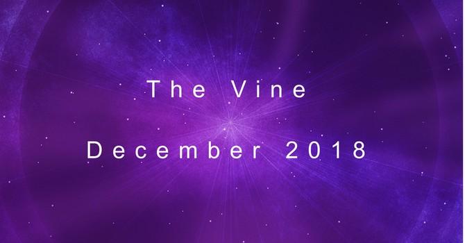 The December Vine image
