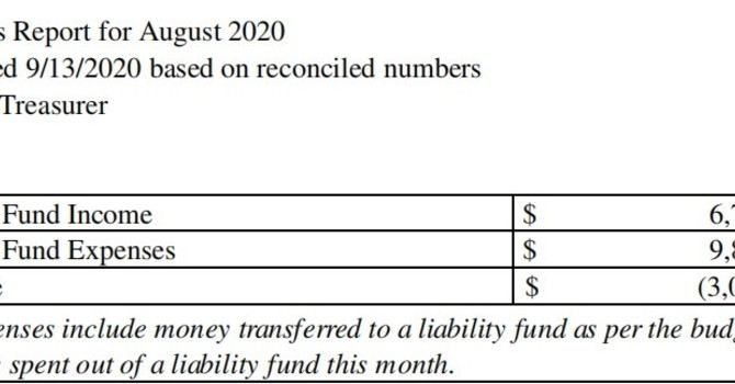 August 2020 Treasurer's Report image