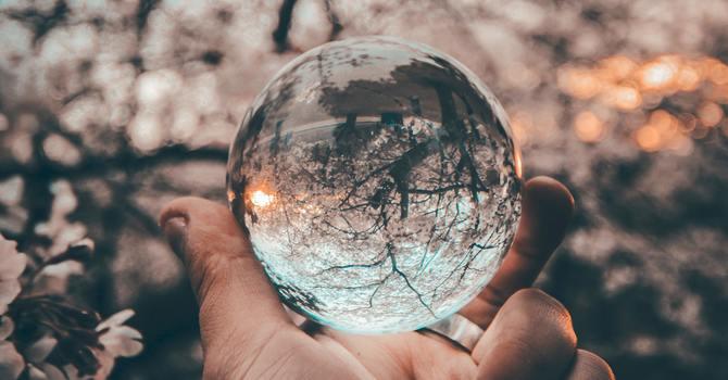 A Reflection by Diana MacDonald
