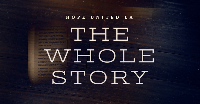 The Whole Story - Bible Study