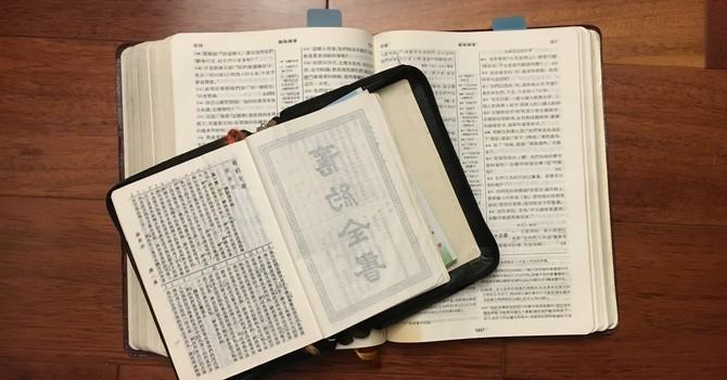 New Life Fellowship Bible Study Groups 新生命團契查經小組