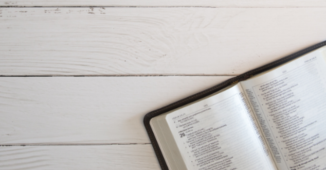 Weekly Bible Study