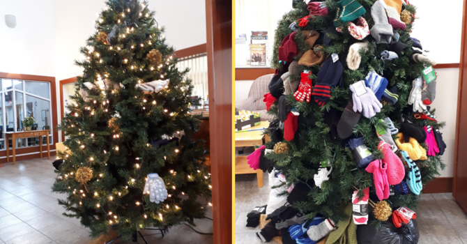 Our Mitten Tree image