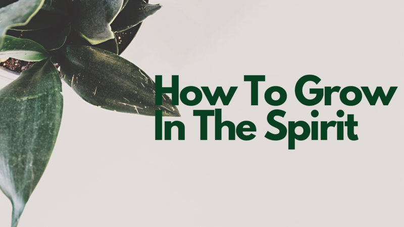 How To Grow In The Spirit
