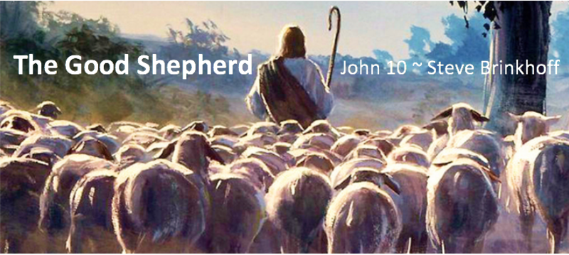 John 10 The Good Shepherd
