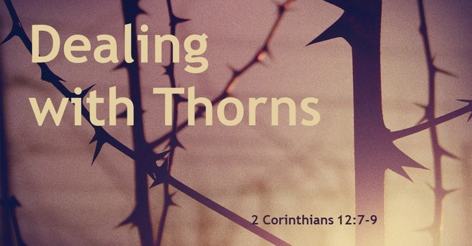 Dealing with Thorns