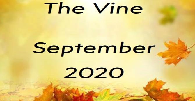 September Vine image