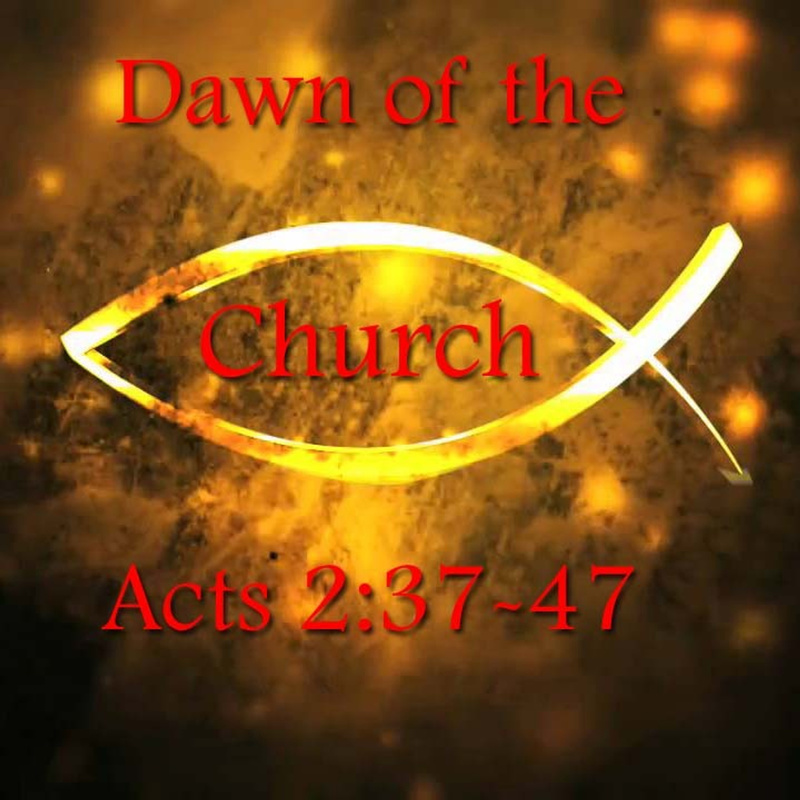Dawn of the Church (5/6)