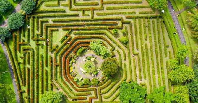 Creating on the Fly:  Quick on My Feet in that Maze! image