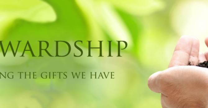 Stewardship Campaign - Week 3 image