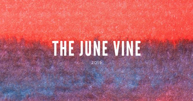 June Vine image