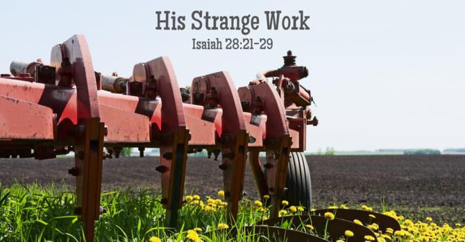 His Strange Work