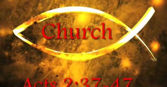 Dawn of the Church (5/6)