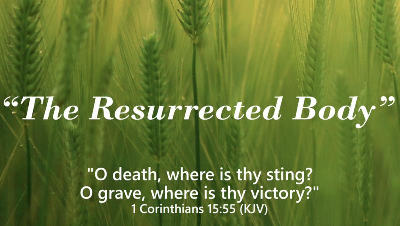 The Resurrected Body