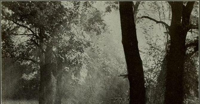 Darkroom outlines image