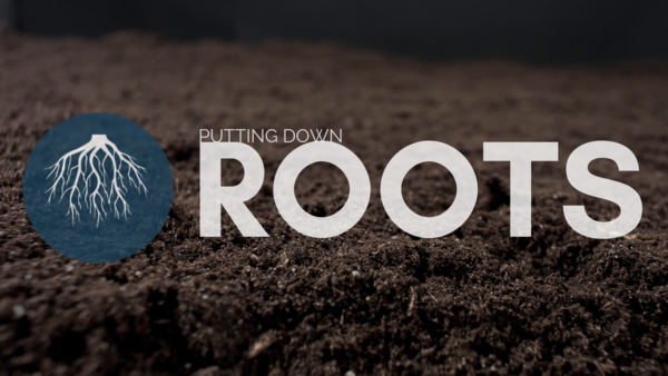 Putting Down Roots
