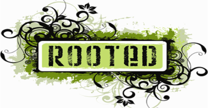 ROOTED Event Teams image