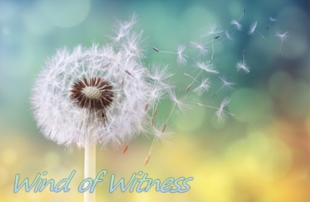 Wind of Witness