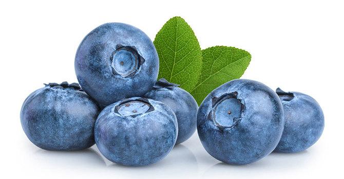Blueberry Pick-Up & Sale!