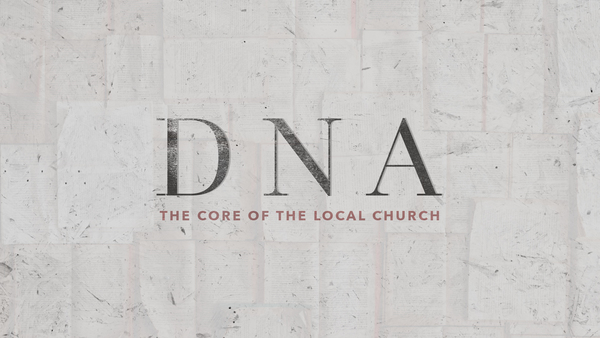 DNA - Our Vision