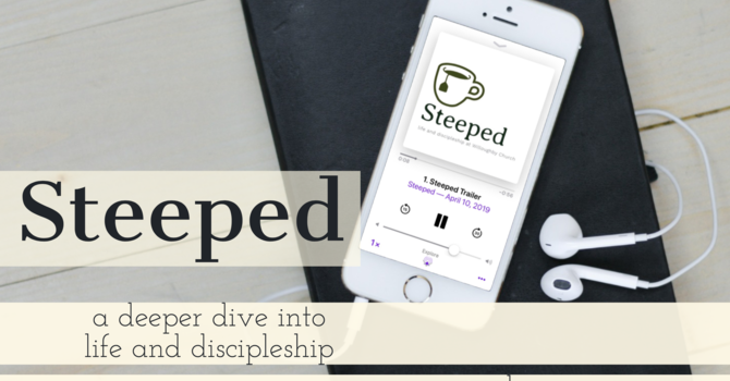 A New Season of Steeped! image