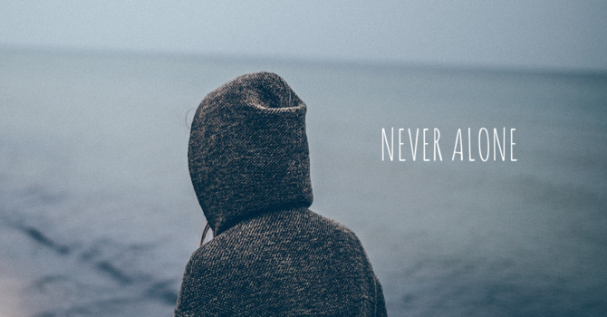 Never Alone  image