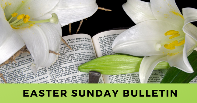 Bulletin - Sunday, April 21, 2019 image
