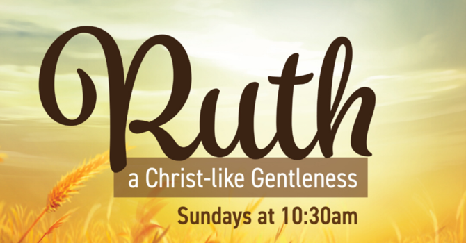 From Ruth to Christ