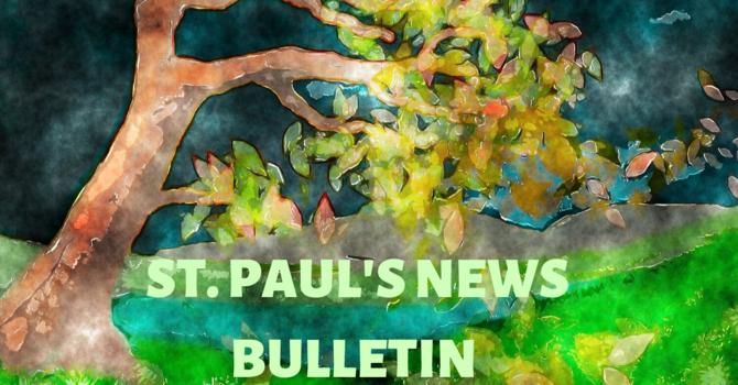St Paul's November 8th News Bulletin image