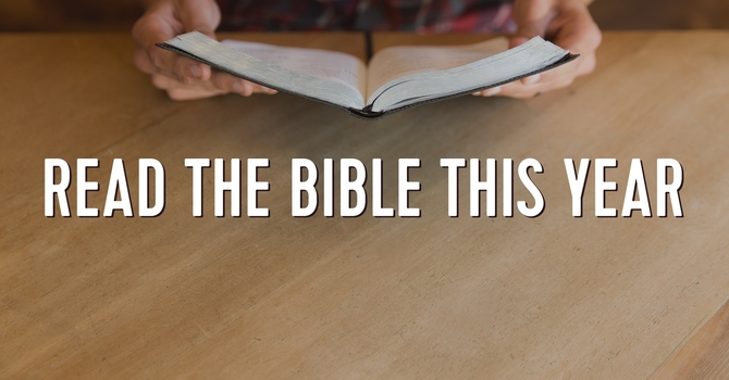 Read Your Bible in 2020 image