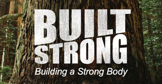 Building A Strong Body