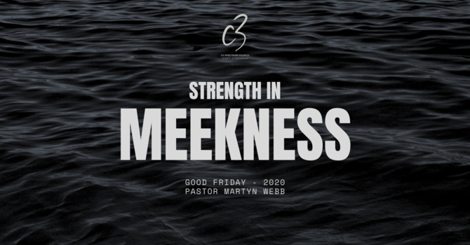 Strength in Meekness