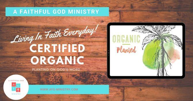 Certified Organic - E051