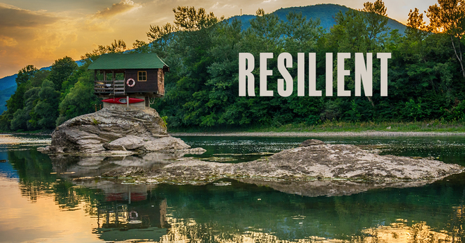Shaping A Resilient Mind