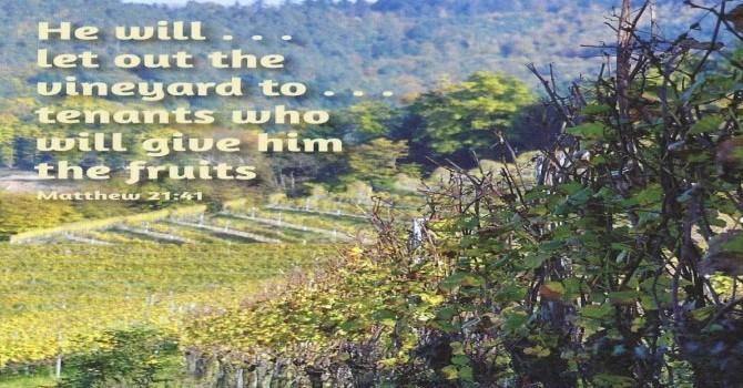 Worship Service Bulletin - Eighteenth Sunday After Pentecost image
