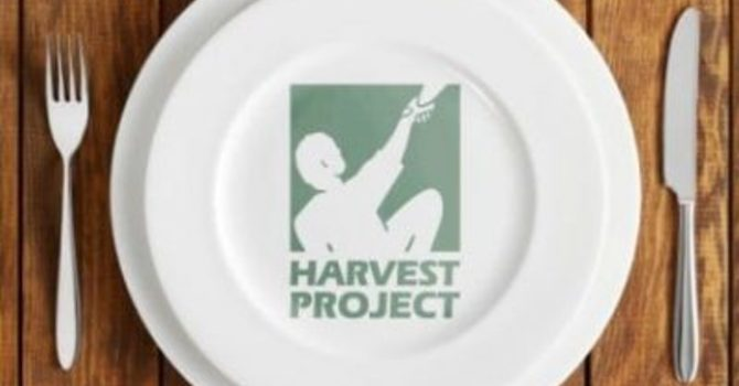 Helping the hungry at harvest time image