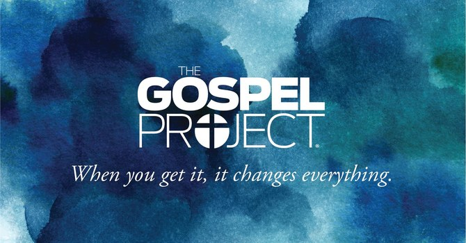 The Gospel Project  image