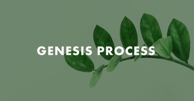 Genesis Process