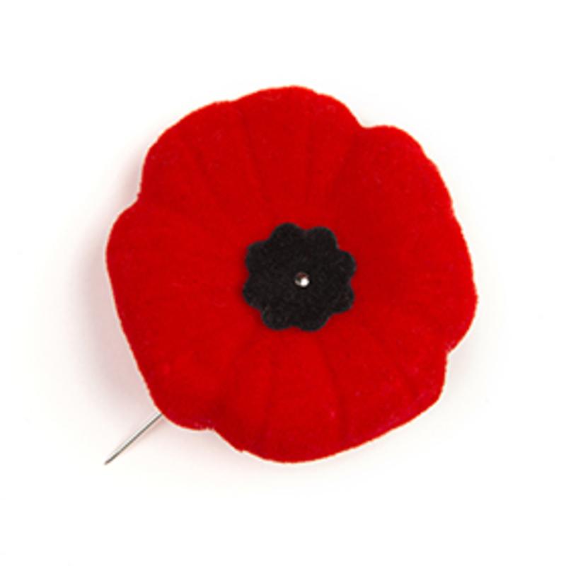 Reflection: Nov. 8, Remembrance Day
