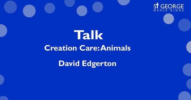Creation Care: Animals image