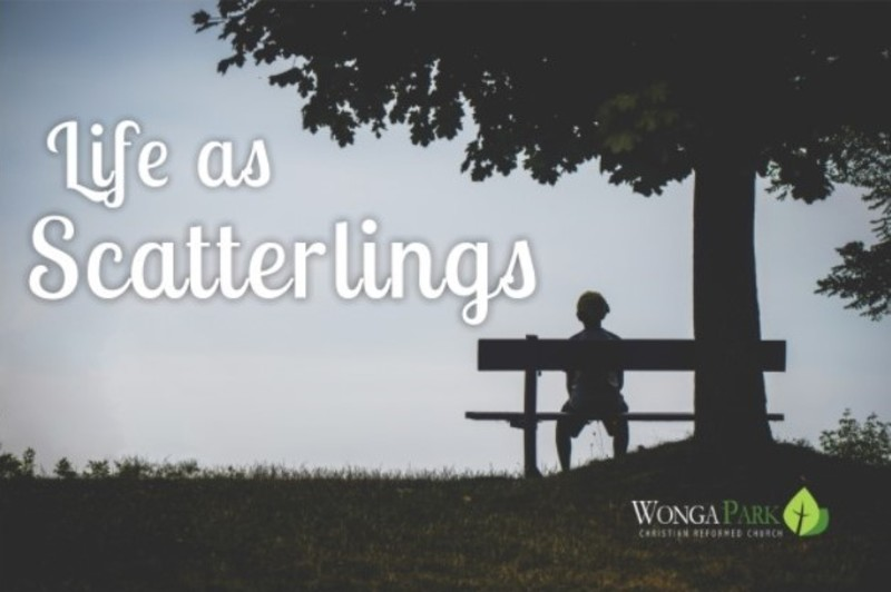 Scatterlings are Adorned with the Word