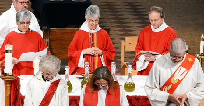 Blessing of Holy Oils - Reaffirmation of Vows image
