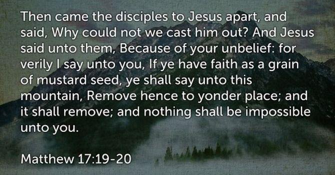 DO YOU HAVE THE FAITH? image