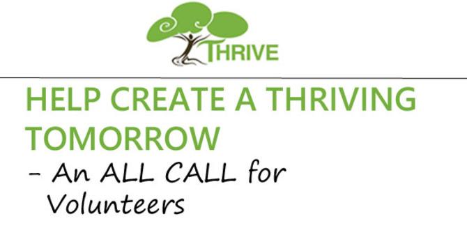 Thrive Team is Looking for Volunteers image