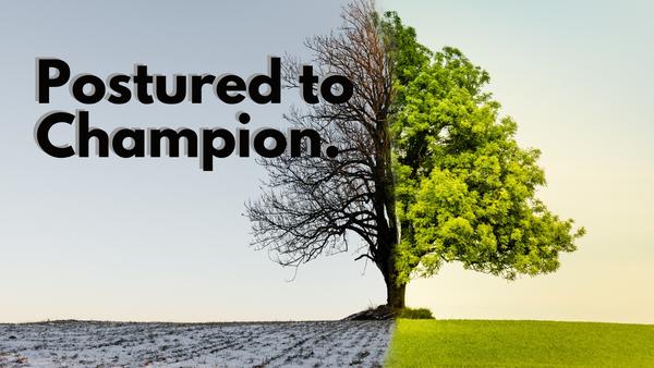 Postured to Champion