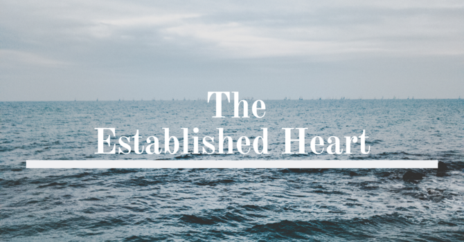 The Established Heart