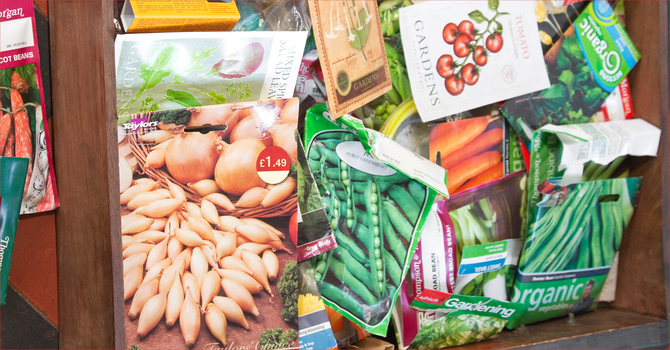 Collecting Veggie Seed Packets image